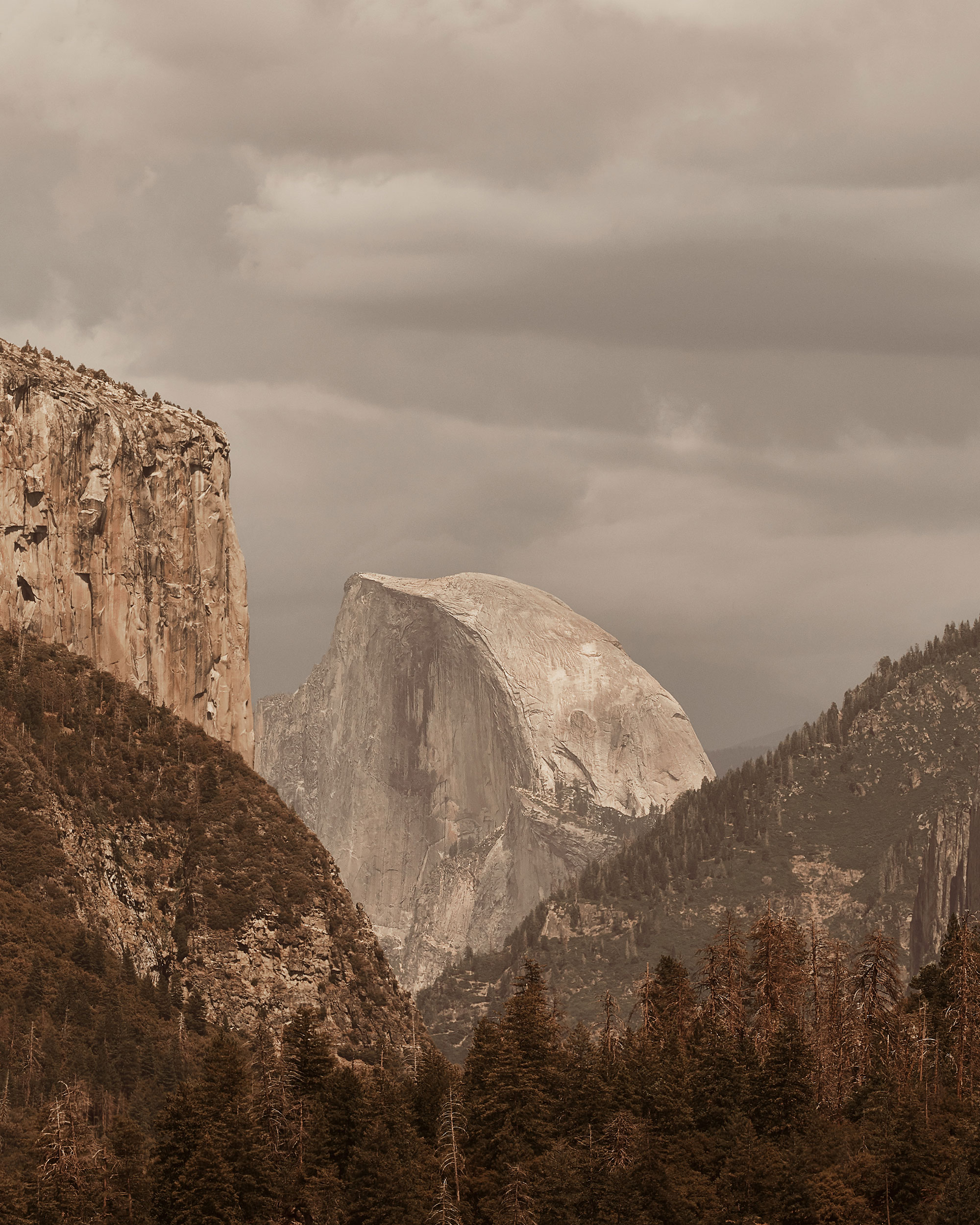 Yosemite National Park - Stephen Denton Photography, Los Angeles, California based interior & hospitality photographer
